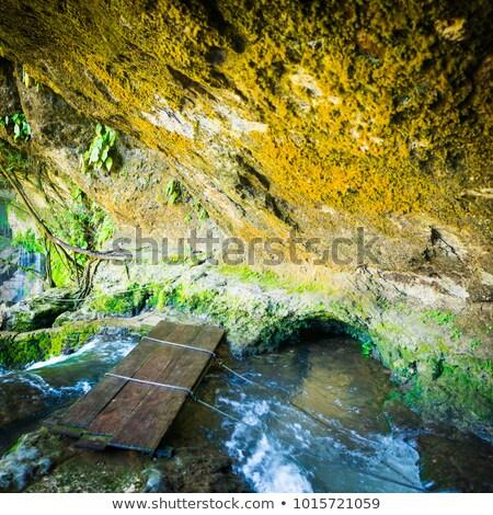 пещере моста водопада реке воды зеленый Сток-фото © THP