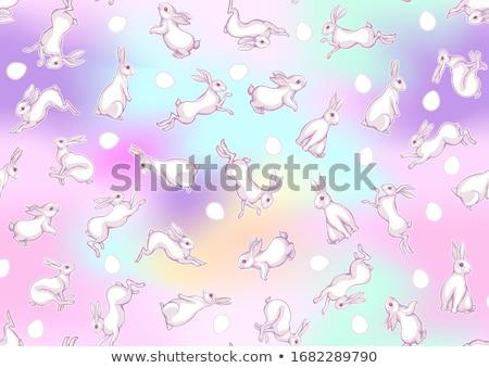 pembe · tavşan · tavşan · süs · tavşan - stok fotoğraf © gladiolus