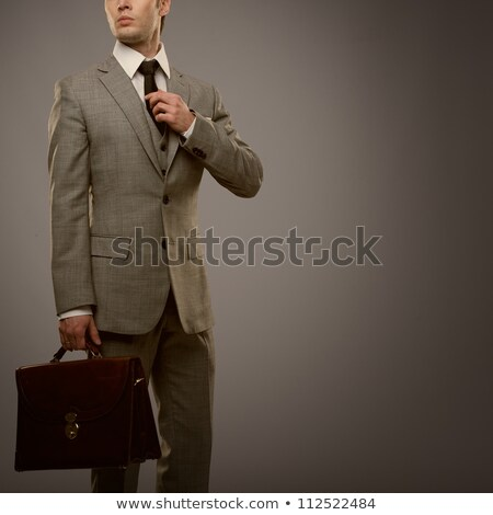 handsome businessman in suit with briefcase Stock photo © svetography
