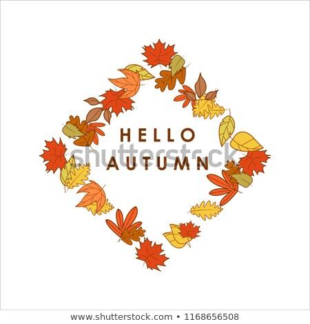 Hello Autumn Greeting Diamond Shape Dry Leaves Frame Illustration Design Stock photo © svvell