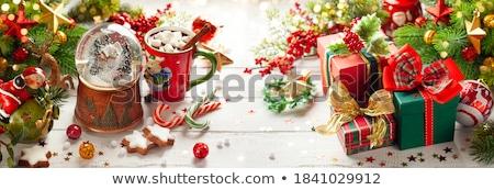 Karácsonyi üdvözlet fenyőfa forró csokoládé csésze mályvacukor ág Stock fotó © karandaev