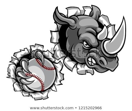 Rhino baseball piłka zwierząt sportowe Zdjęcia stock © Krisdog