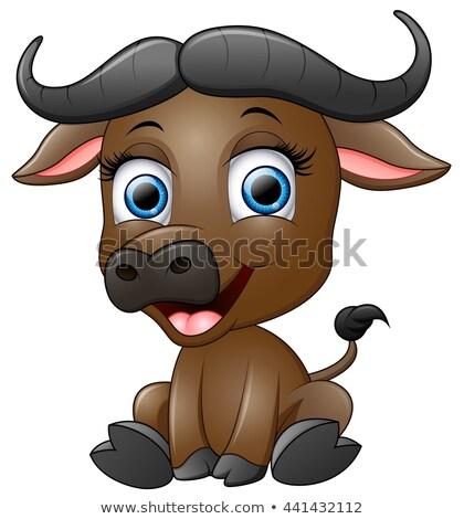 Happy Cartoon Buffalo Stock photo © cthoman