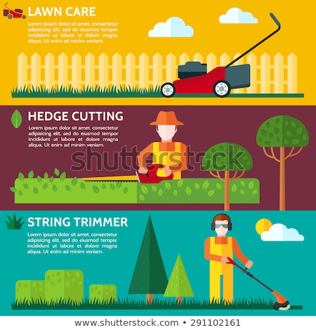 lawnmower mower lawn mower trimmer Stock photo © studiostoks