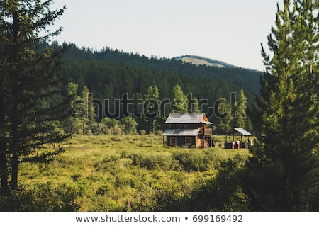 Two wooden cabins on the field Stock photo © colematt