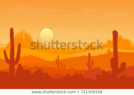 a silhouette desert scene stock photo © bluering