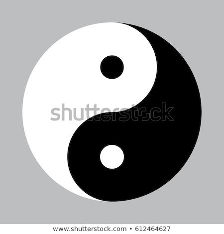 Yin Yang Symbol Isolated Vector Illustration Stock photo © jeff_hobrath