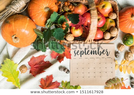 September harvest of apples and walnuts in basket, pumpkins, acorns and leaves Stock photo © pressmaster