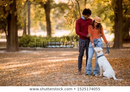 çift · yürüyüş · köpek - stok fotoğraf © boggy