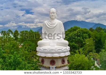 Büyük Buda heykel uzun oğul pagoda Stok fotoğraf © galitskaya