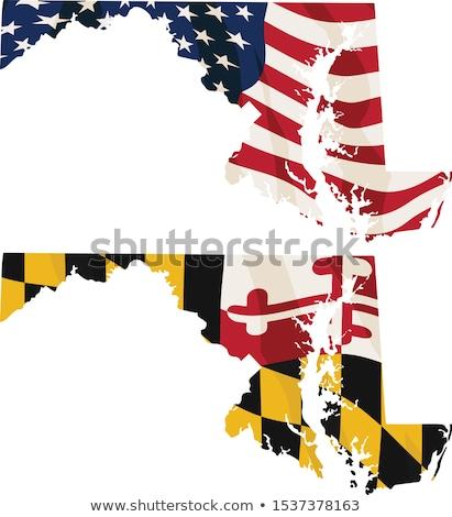 Maryland USA banderą odizolowany amerykańską flagę Zdjęcia stock © jeff_hobrath