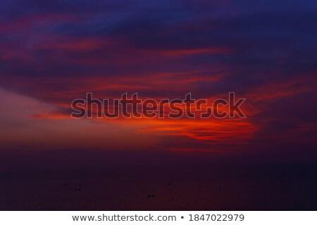 Stock fotó: Vivid Pre Dawn Light