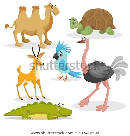 funny ostrich in the desert Stock photo © adrenalina
