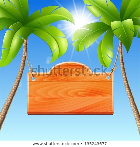 Vector palmboom geïsoleerd witte strand Stockfoto © dashadima