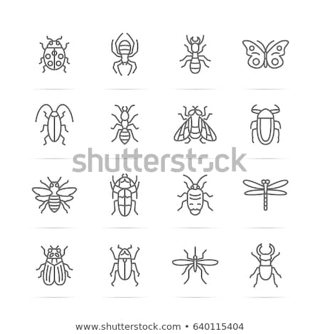 Mug insect icon vector schets illustratie Stockfoto © pikepicture