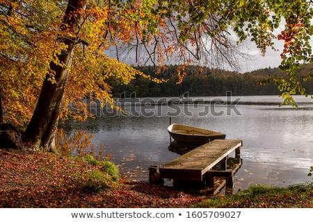 Puente peatonal naturales paisaje agua naturaleza Foto stock © manfredxy
