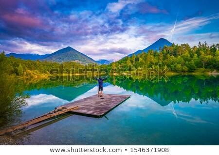 озеро Альпы замок лес природы горные Сток-фото © MichaelVorobiev