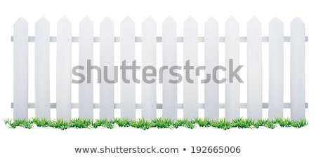 White Picket Fence on Green Background Vector Stock photo © robuart