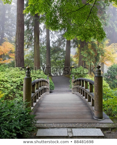 Stock fotó: Foggy Morning At Wooden Foot Bridge At Japanese Garden