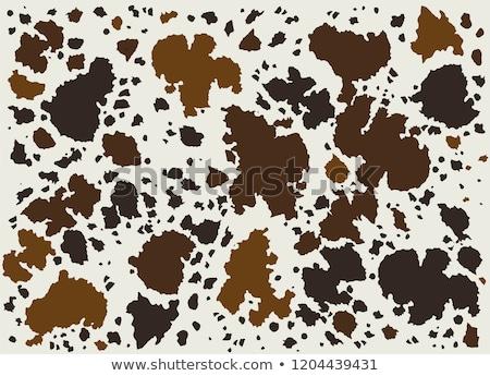 Cowhide brown Stock photo © sumners