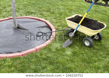 Mulch Dumping cart stock photo © ozgur