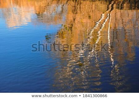 Scotish waterfall HDR Stock photo © ollietaylorphotograp