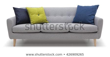 роскошь удобный диван изолированный белый Председатель Сток-фото © JohnKasawa