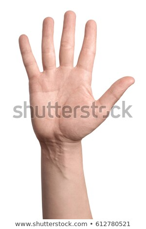 man · hand · hallo · teken · business · werknemer - stockfoto © chesterf