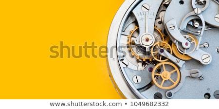 макроса · мнение · часы · механизм · старые · работу - Сток-фото © tolokonov
