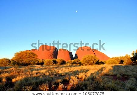 The Olgas Australia Stock photo © iofoto