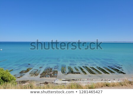 oyster parks cancale stock photo © smuki