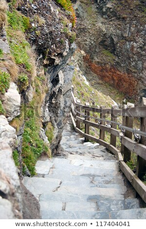 крутой лестницы замок Корнуолл мысли царя Сток-фото © Bertl123