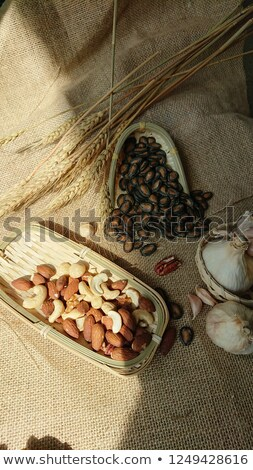 Beans aand Seeds Stock photo © MamaMia