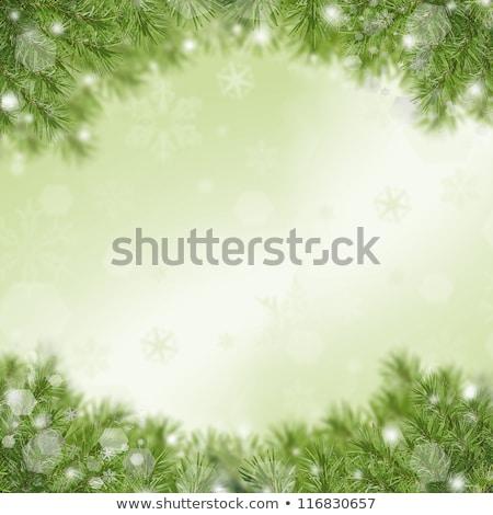 Natal quadro verde isolado branco árvore Foto stock © bloodua