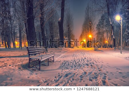 Stock photo: Frozen winter landscape with snow-covered bench