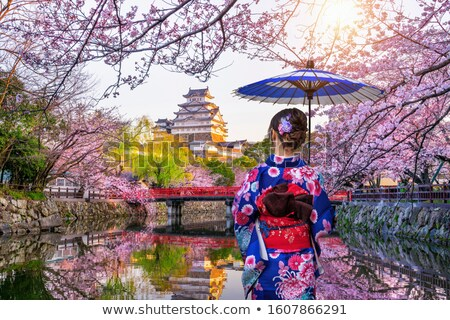 bahar · kimono · vektör · retro · tarzı · kuşlar - stok fotoğraf © ansy
