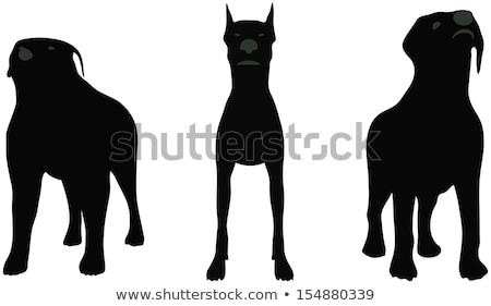 stock vector of dogs silhouette standing in front of camera over white background Stock photo © Istanbul2009
