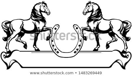 Negro caballo herradura equipo identidad competencia Foto stock © HunterX