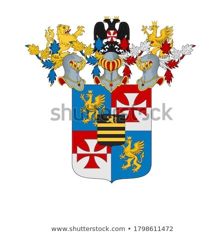 sisak · kabát · karok · címer · középkori · nagyszerű - stock fotó © derocz