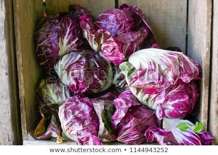 üretmek organik göstermek çiftçiler pazar Stok fotoğraf © dgilder