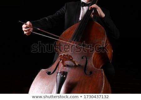 Dupla basszus játékos férfi zenész játszik Stock fotó © madebymarco