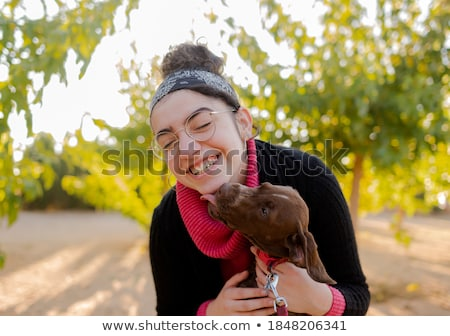щенков · за · пределами · работает · собака · осуществлять - Сток-фото © willeecole