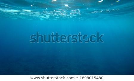 Diep Blauw zee water voorraad foto Stockfoto © punsayaporn