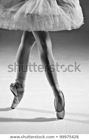 Low section of ballerina Stock photo © Bananna