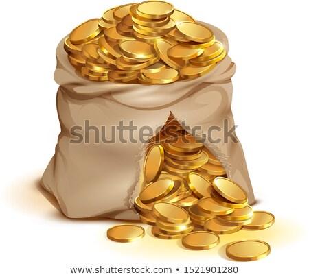 Barna táska tele arany érmék illusztráció vektor Stock fotó © orensila