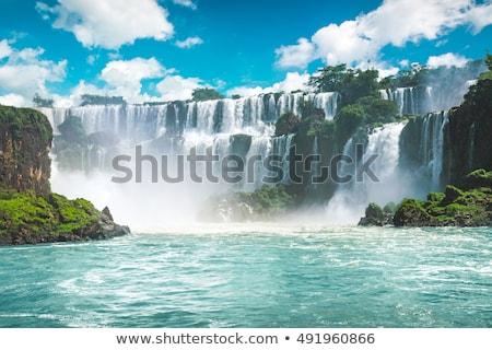 Vízesés mozgás részlet Argentína bemozdult természet Stock fotó © elxeneize
