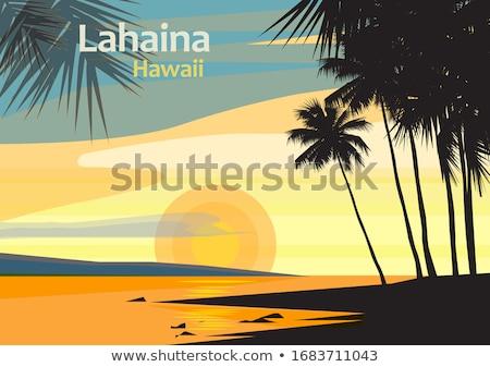Plage coucher du soleil palmiers blanc noir version soleil Photo stock © Slobelix