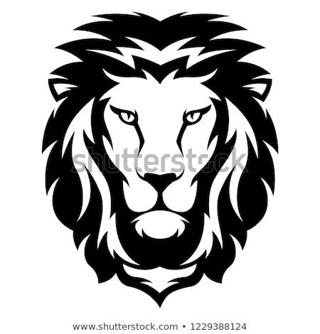 лев лице силуэта иллюстрация кошки Сток-фото © silverrose1