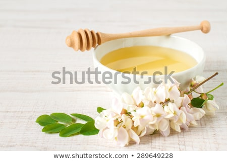 Honey dripping and Acacia flowers Stock photo © mady70