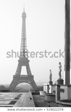 Gold tower in black and white Stock photo © rmbarricarte
